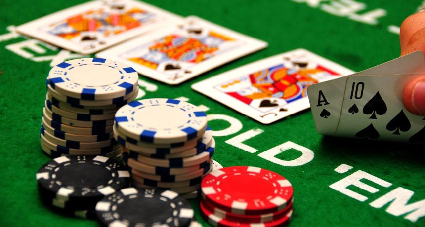 cá cược casino trực tuyến
